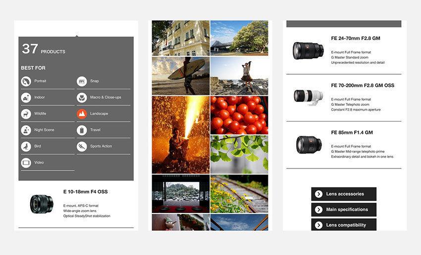 Catálogo digital con búsqueda